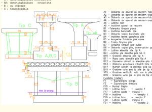 RBridge-Pier input data